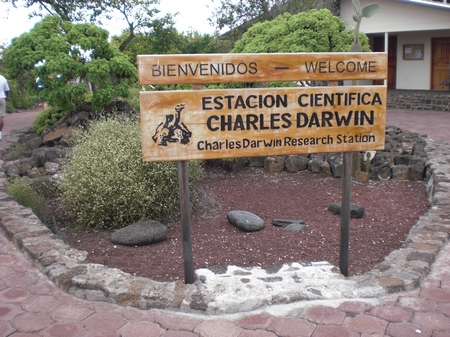 Darwin Station in Puerto Ayora
