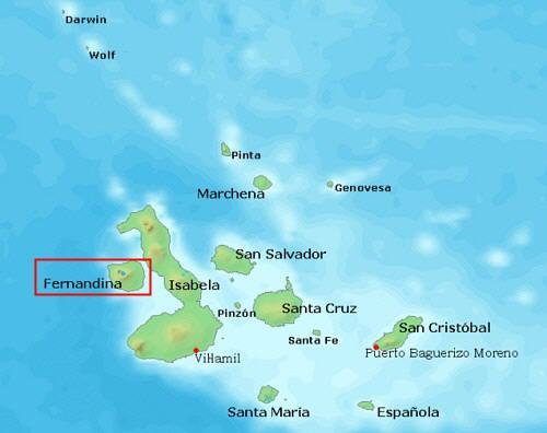Insel Fernandina
